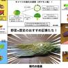 自分が書いた野菜×歴史の記事の中で特におすすめの7選!