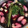 【24時間ワイン風呂】フランスの煮込み料理コッコーヴァンを作りました!