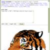 SVG on canvas on Flash (FlashCanvas Pro)