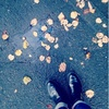 冬になる。10月きもの会