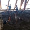 鹿児島、指宿の観光名所「砂むし温泉」は犬猫ペットにも大人気