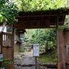 京都 青もみじの寂びの滝口寺