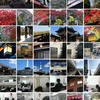 関西出張、塾訪問の旅