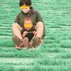 東京から1時間!こもれび森のイバライドは幼児から大人までめちゃくちゃ楽しめる!子連れ(2歳、5歳)で行ってきたよ② 芝滑り最高!!