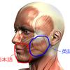 アメリカ英語の発音ノウハウ (3) ~ 顔の筋肉の使い方