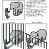 動物イラスト:ゾウの鼻を長くする仕事