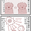 【犬マンガ】犬の鼻の色が変化する、ウィンターノーズ検証画像