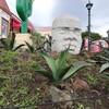 ここはカクタスサンクチュアリ!伊豆シャボテン公園!アガベ軍の圧倒的な勢力図!アステカ文明やらマヤ文明の遺跡群もイカスぜ!