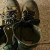 探鳥用に新しい靴「SALOMON X ULTRA 3 WIDE MID GORE-TEX」を注文