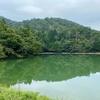 緑が池(滋賀県高島)