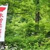 木曽の漆器祭りと奈良井宿場祭へ行きました