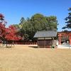 京都「上賀茂神社」紅葉 2020
