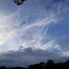 10月20日(日)「アース・エコ・フェア浜松城公園」の空