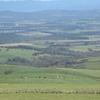 ナイタイ高原牧場によって釧路からルスツへ移動