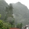 雨に濡れる室生寺