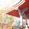 森本千賀子さん講演会(京都紅葉の宴2018)