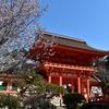 京都上賀茂神社は凛とした空気が漂う神聖な場所です。(Kyoto, kamigamojinjya)