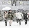 厳しい寒波続く 各地で今季最低気温に