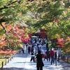 秋の京都1日観光、紅葉めぐり