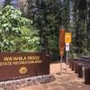 ハワイで森林浴