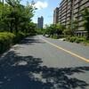行ってきましたよ😁大阪湊の方
