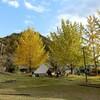 秋キャンプ(リフレッシュパーク市川)