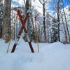 いつの時代もスキーは家族みんなで楽しめるスポーツです・・