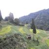 アトピーっ子と温泉旅行