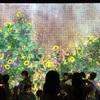 世界初公開作品「光群落」が超すてき、チームラボ個展@金沢21世紀美術館