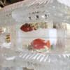 さっぽろ雪まつり名物『魚氷』中止へ!クレーマー(少数)の圧倒的声のデカさ!