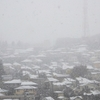 えっ、もう初雪……