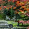 本日限定・・初秋の陽気