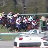 朝日杯FS【2017年 回顧】と有馬記念に向けてのプロモーション動画