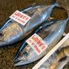 2021年3月11日 小浜漁港 お魚情報