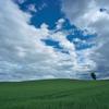 雲間から見える空は「夏の空」