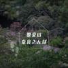 晩夏の奈良さんぽ