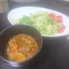 手羽元カレー、サラダ/チキンライス、スープ