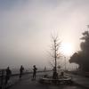 大山寺の紅葉と蓑毛散策