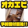 【レイドジャパン】ロングアームのエビ系ワーム「オカエビ」通販予約受付開始!