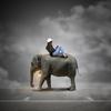 2つの人生をどう生きるか|夢をかなえるゾウ3 ブラックガネーシャの教えの書評