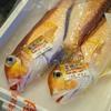 2020年2月26日 小浜漁港 お魚情報