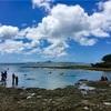 沖縄料理とベトナム料理の融合⁈ in備瀬崎