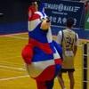 2019-20 B1リーグ 第4節 琉球ゴールデンキングス vs 秋田ノーザンハピネッツ GAME1