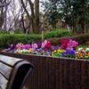新宿中央公園をぶらぶらお散歩