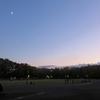 「夕暮れの」城北中央公園ランで思ったこと