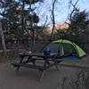 走り初め、泊まり初め 清和県民の森へソロキャンプツーリング