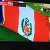 絶対に負けられない戦いがそこにはあった、ペルー対フランス戦!ペルー国民が悲しみにくれた日!