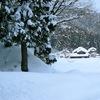 続々・豪雪