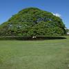 【2014年ハワイ】ホノルル一日観光・2日目【2014.5.30】