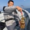 11月18日(水)午前アオリ、午後カイワリ・ティップランエギング